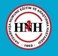 Haydarpaşa-Numune-Eğitim-Ve-Araştırma-Hastanesi-Logo